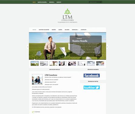 LTM Consultores
